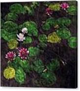 0151-lily -  Watercolor 2 Sl Canvas Print