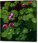 0151-lily - Chalk 1 Sl Canvas Print