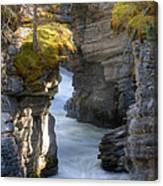 0191 Athabasca Canyon 2 Canvas Print