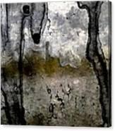 0388 Canvas Print