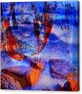 0539 Canvas Print