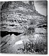 0715 Guardian Of Canyonland Canvas Print
