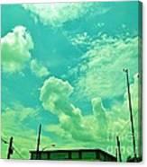 08212013060 Canvas Print