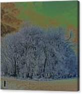 An Irish Winter Scene Canvas Print
