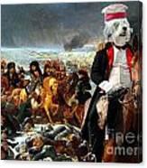Tibetan Terrier Art Canvas Print Canvas Print