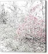 1-108 Manifestations Of Eternity Canvas Print