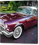 1957 Ford Thunderbird Convertible Painted    Canvas Print