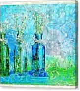 1-2-3 Bottles - S13ast Canvas Print