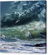 3327 Canvas Print