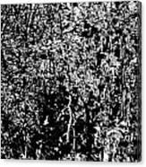 1-66 Manifestations Of Eternity Canvas Print