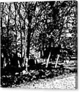1-79 Manifestations Of Eternity Canvas Print