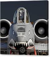 A-10 Warthog Canvas Print
