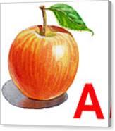 A Art Alphabet For Kids Room Canvas Print
