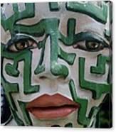 A Maze Ing Face 2 Canvas Print