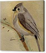 A Tufted Titmouse Canvas Print