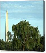 A Weeping Willow Washington Monument Canvas Print