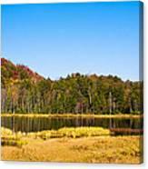 Adirondack Color Vi Canvas Print