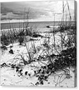 After The Storm Bw Canvas Print