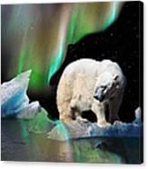 Alaska Aurora Polar Bear Search Canvas Print