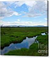 Alaskan Tundra Canvas Print