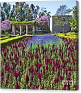 Alcazar Garden Vibrant Color Display Balboa Park  Canvas Print