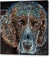 Old Blue Eyes Canvas Print