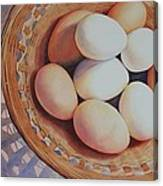 All My Eggs In One Basket Canvas Print