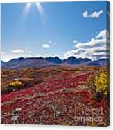 Alpine Landscape In Fall Canvas Print