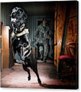 An Air Force Security Forces K-9 Canvas Print