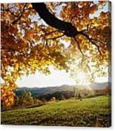 Late In The Day And A Setting Sun Canvas Print
