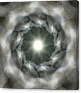 Ancient Light II Canvas Print