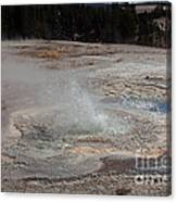 Anemone Geyser In Upper Geyser Basin Canvas Print
