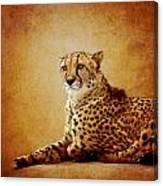 Animal Portrait Canvas Print
