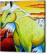 Appaloosa Dawn Canvas Print