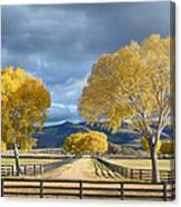 Arizona Horse Ranch Canvas Print