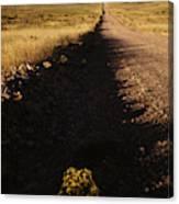 Arizona Strip Canvas Print