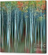 Army Of Trees Canvas Print