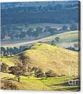 Australian Landscape Canvas Print