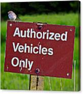 Authorized Vehicles Only Canvas Print