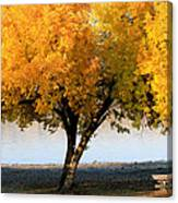 Autumn At The River Canvas Print