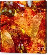 Autumn Bright Canvas Print