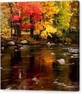 Autumn Colors Reflected Canvas Print