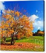 Autumn Fall Landscape Canvas Print
