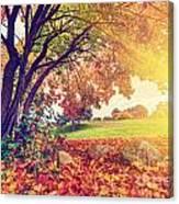 Autumn Fall Park Canvas Print