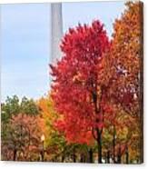 Upward - Autumn High Canvas Print