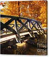 Autumn Park Canvas Print