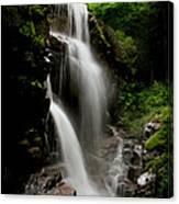 Avalanche Falls Canvas Print
