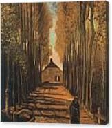 Avenue Of Poplars In Autumn Canvas Print