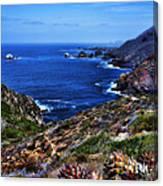 Baja Coast Canvas Print