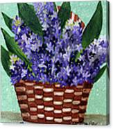 Basket Of Hyacinths  Canvas Print